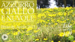 La natura a Perarolo sui Colli Berici in aprile