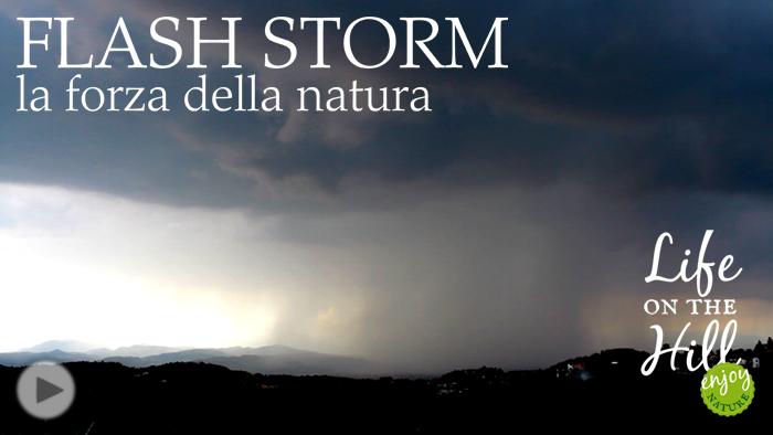 Flash storm a Perarolo sui Colli Berici