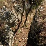 Sentiero 72 - Colli Berici - trincea sul Monte Tondo