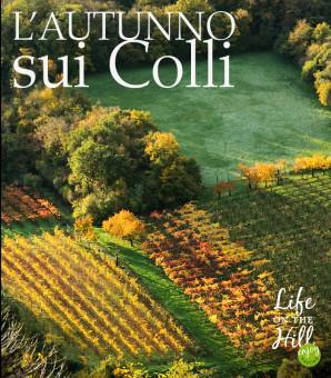 Filari in autunno - Colli Berici