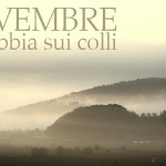 La nebbia tra i colli riferimento Colli Berici