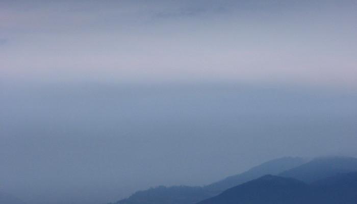 Nati sotto un mare tropicale - Colli Berici