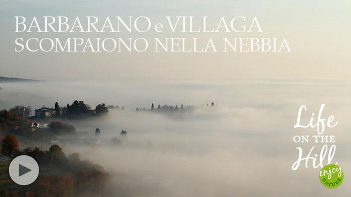 Nebbia su Barbarano e Villaga - Colli Berici