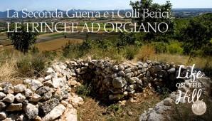 Trincee ad Orgiano sui Colli Berici
