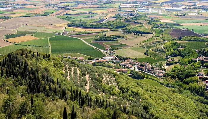 Sentiero 71 della Cengia Colli Berici - veduta panoramica