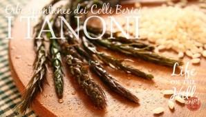 Tanoni - Colli Berici