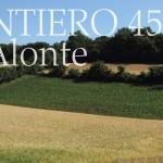 Sentiero 45 di Alonte Colli Berici