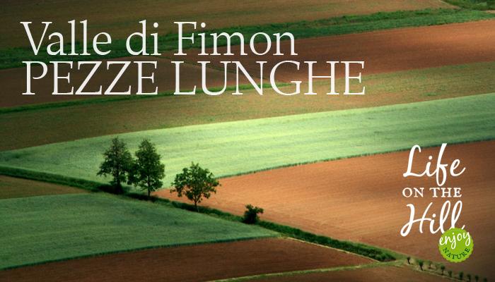 Valle di Fimon - Pezze Lunghe - FB