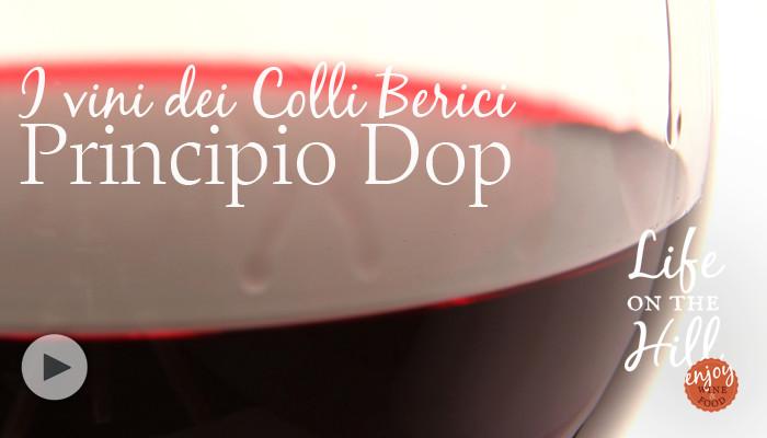 Principio Dop - Colli Berici