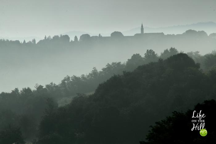 San Pancrazio - Colli Berici - mattino di settembre