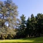Parco di Villa Guiccioli - foto: Claudio Gioseffi