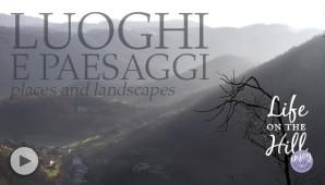 Luoghi e paesaggi Colli Berici