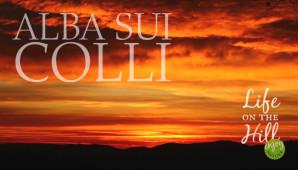 L'alba dalla dorsale dei Colli Berici