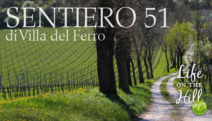 Sentiero51 di Villa del Ferro