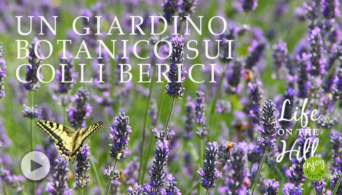 Un giardino botanico sui Colli Berici