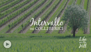 L'intervallo sui Colli Berici