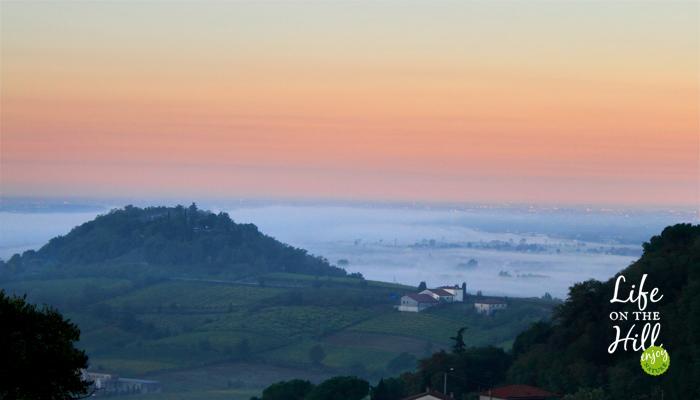 Mattino sulla nebbia - interna - Colli Berici