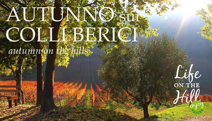 Autunno sui Colli Berici - San Germano dei Berici - Life on the hill