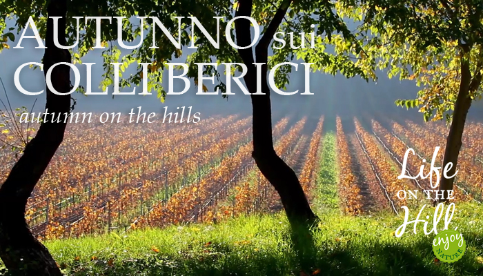 Autunno sui Colli Berici - Life on the Hill