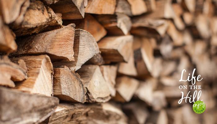 Fare legna del bosco.jpg Fare legna del bosco - interna.jpg