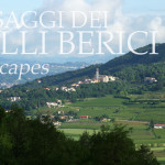 Paesaggi dei Colli Berici - Brendola - Life on the Hill