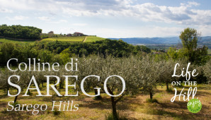 Colline di Sarego - Life on the Hill