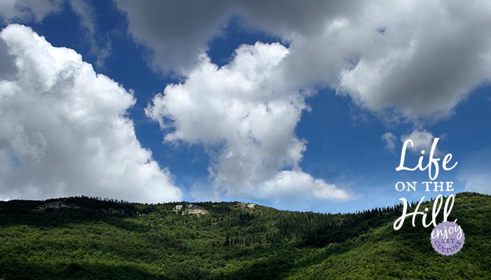 Bosco del Faeo, Colli Berici, Villaga