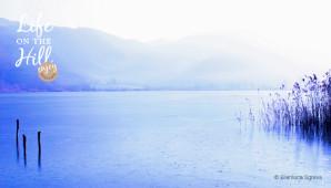 laghi e paludi colli berici