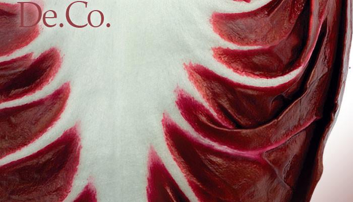Il radicchio rosso di Asigliano