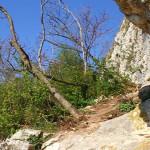 Sentiero 71 della Cengia Colli Berici - sotto la Cengia