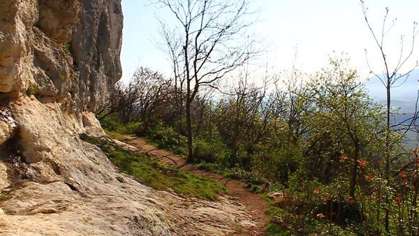 Sentiero 71 della Cengia Colli Berici - tratto sotto la Cengia