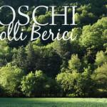 I boschi dei Colli Berici