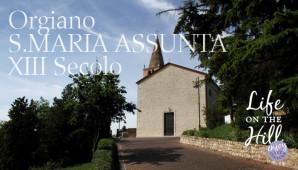 Chiesa S.Maria Assunta - Orgiano - Colli Berici