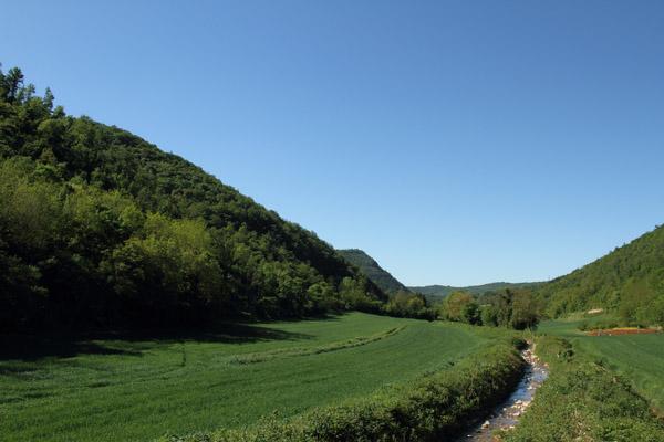Valle del Gazzo - Torrente Liona