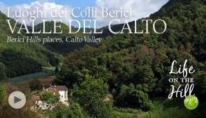 Valle del Calto - Colli Berici