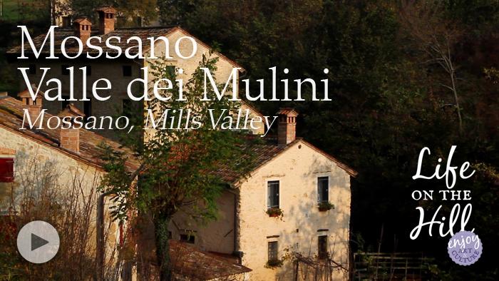 Mossano Valle dei Mulini, Colli Berici