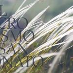 Nel microcosmo di San Donato - Colli Berici