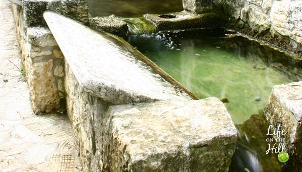 Fontana della Villa