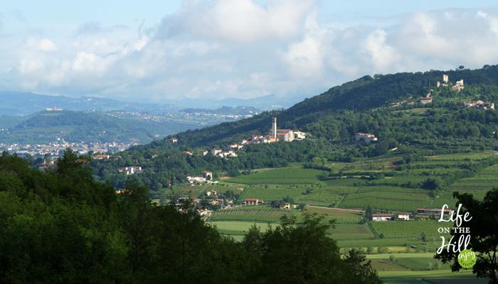 Paesaggi dei Colli Berici - Life on the Hill