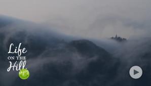 Il paese sopra le nuvole - Colli Berici