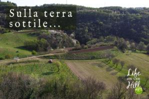 Piccola valle antica dei Colli Berici